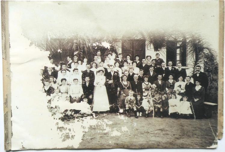 Família Suckow