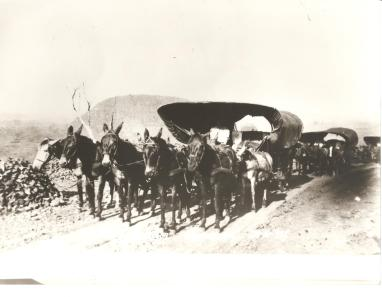 Serra da Esperança - Guarapuava, 22.10.1937.